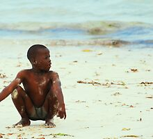 Beach Boy by Tony Hadfield
