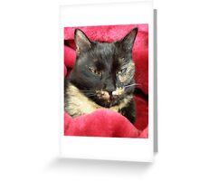 Cleo Greeting Card