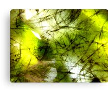 Lemon and Lime Canvas Print