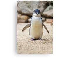 Happy Feet Canvas Print