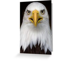 Sam the bald eagle. Greeting Card