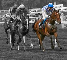 Day At The Races by Mark Robson