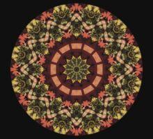 Slovak kaleidoscope #1 by Roberto Pagani