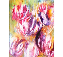 Rainbow Tulips Photographic Print