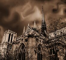 Paris - Right Side View of The Notre-Dame Cathedral by jean-louis bouzou