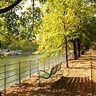 Autumn walk in Paris by bubblehex08