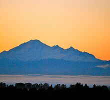 Rising from the Fog...Mount Baker by Carol Clifford