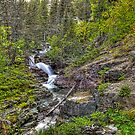 Sunset at Baring Falls by Dennis Jones - CameraView