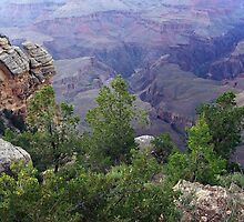Grand Canyon Panorama at Mather Point by stevelink