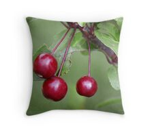 Berry Simple Throw Pillow