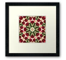 Old Red Rose Kaleidoscope 5 Framed Print
