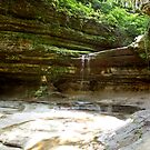 LaSalle Canyon by Donna R. Cole