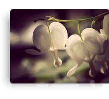 laughs in flowers Canvas Print