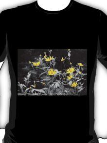 Chokeweeds SC T-Shirt