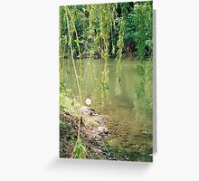 whispering willow Greeting Card