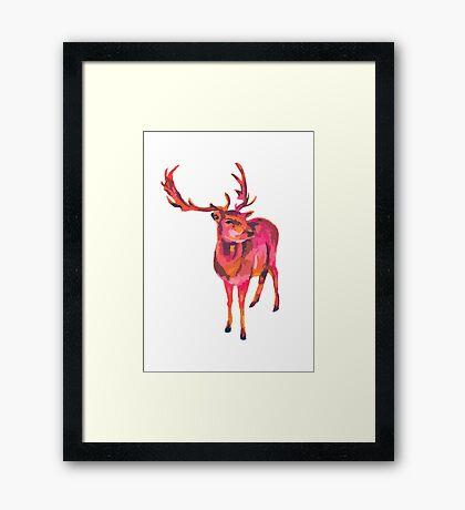 Antler Framed Print