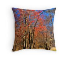SPARKS LANE, SPRING Throw Pillow