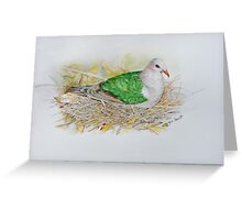 Emerald Ground Dove Greeting Card
