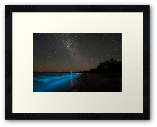 Bioluminescence in the Waves by Phil Hart