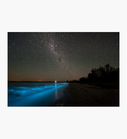 Bioluminescence in the Waves Photographic Print