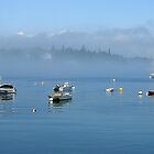 Boats in Fog, Bass Harbor, Maine USA by Dan Hatch