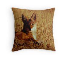 Silverback jackal in the shadows Throw Pillow