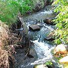 Nyaania Creek by aldemore