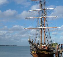 Tall Ship Newcastle Harbour NSW Australia by Janette Rodgers