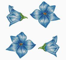 Blue Flowers by Melisa Green