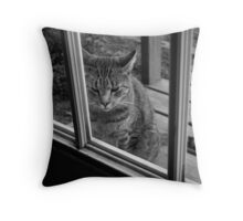 Can I Come In? Throw Pillow