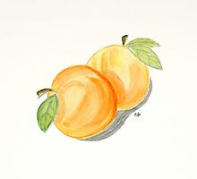 Orange Apricots Watercolor Painting. by Eugenia Alvarez
