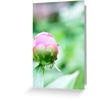 Round the Bud Greeting Card