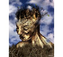 Wood Woman  Photographic Print