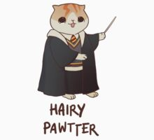 Hairy Pawtter by derlaine