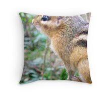 Mr Chipmunk  Throw Pillow