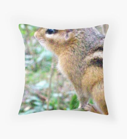 Mr Chipmunk  Throw Pillow