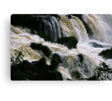 Iguassu Falls - close up Canvas Print