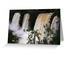 Iguassu Falls vista - Argentinian side Greeting Card