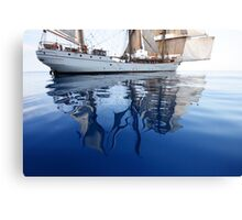 Europa's Reflections Canvas Print