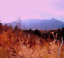 Garden of The Gods, Colorado Springs. by myrbpix