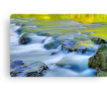 Argen River Canvas Print