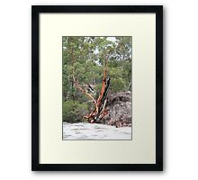 Punchbowl Creek, Columboola Framed Print