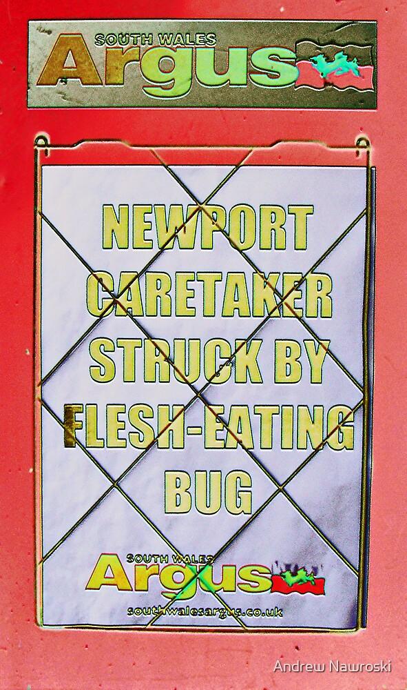 The Roaroring Welsh Press Newspaper Bill Board. by Andy Nawroski