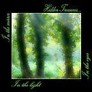 Hidden Treasures by LilithLilith