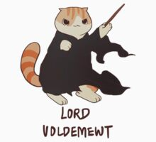Lord Voldemewt by derlaine