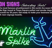 Neon Signs – Interesting Facts! by blurstudiosau