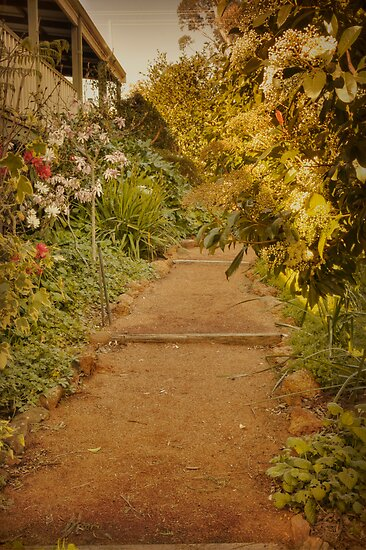 Up the Garden Path by Elaine Teague