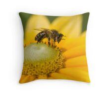 Honey bee washing his face! Throw Pillow