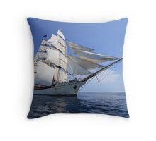 The Bark Europa Throw Pillow