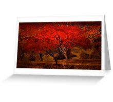 Bright Maple Tree Greeting Card